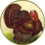 thanksgiving-turkey-in-circle