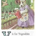Карточки с английским алфавитом и стишками для детей: V.