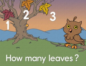 How many leaves